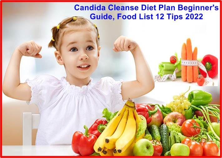 Candida Cleanse Diet Plan